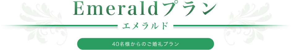 emeraldplan-title